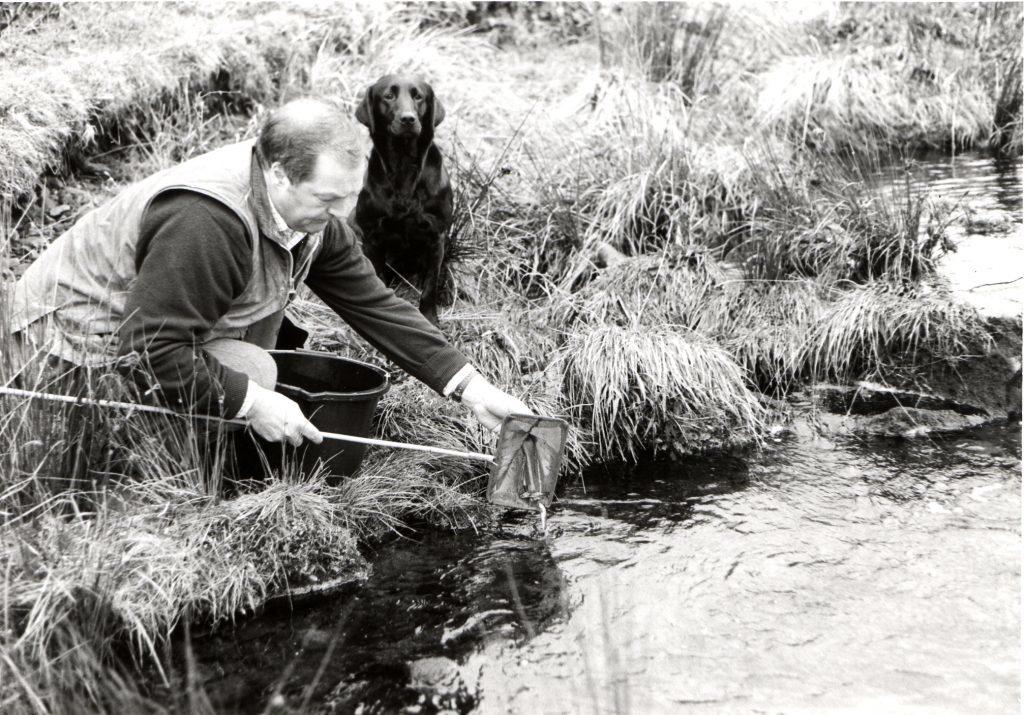 Bailiff Bob Scott re-stocks Sliddery Water with baby salmon.