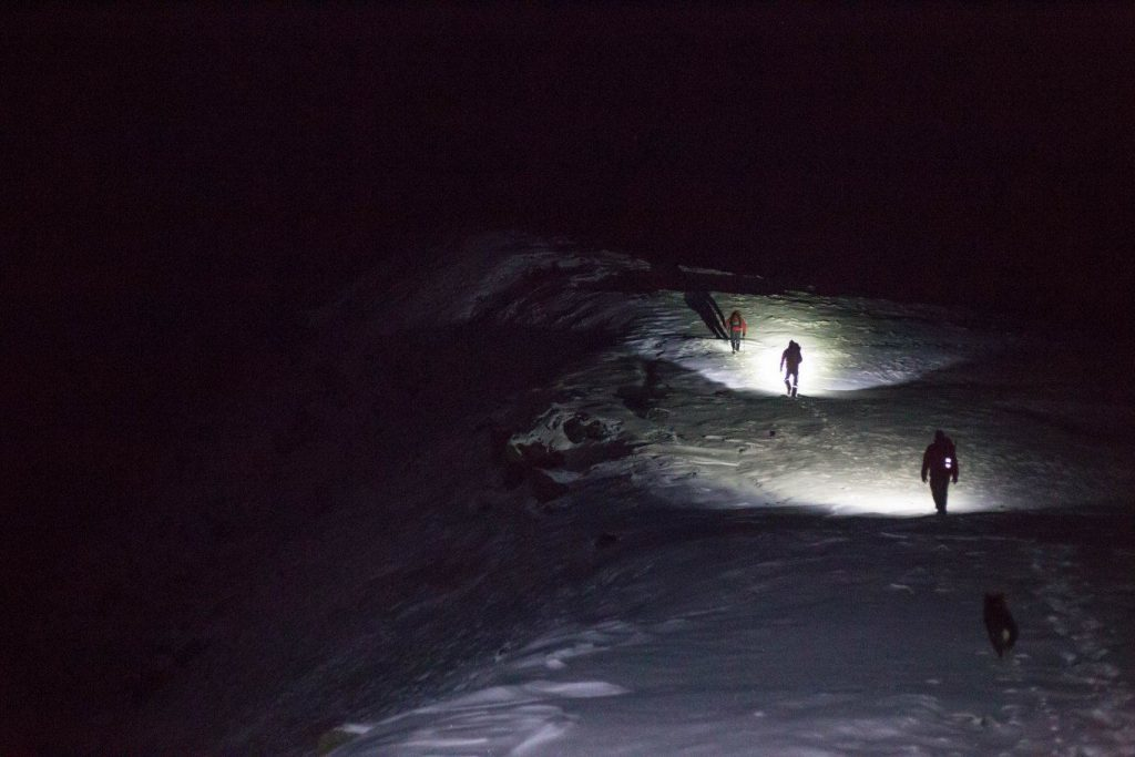 Team members and rescue dog make their way into the night in total darkness