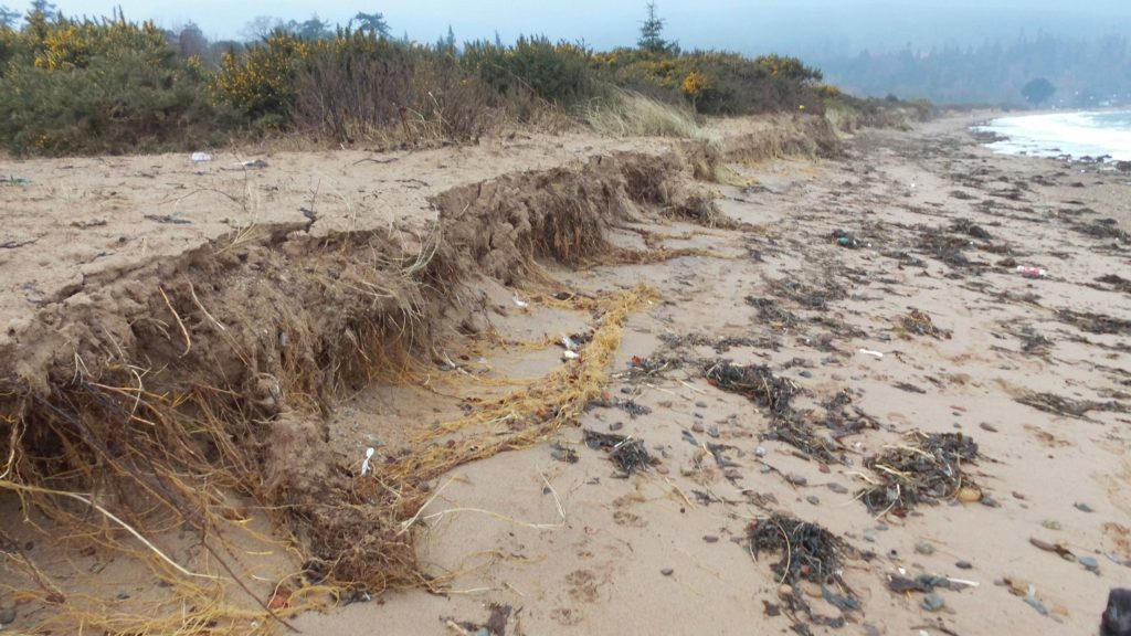 Further along Brodick beach erosion has also taken place at areas not protected by geotextile bags. Photo by John Baraclough