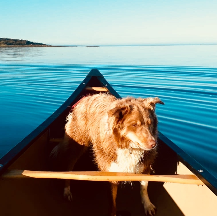 Millie the club mascot joined members on the water.