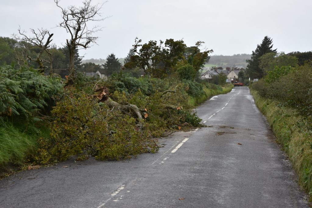 Many roads were reduced to single file traffic owing to downed trees and debris which obstructed the roads.