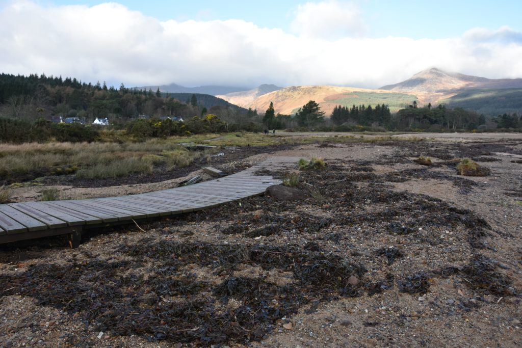 Seaweed and kelp litter the area near the wooden walkway which is still undergoing running repairs.
