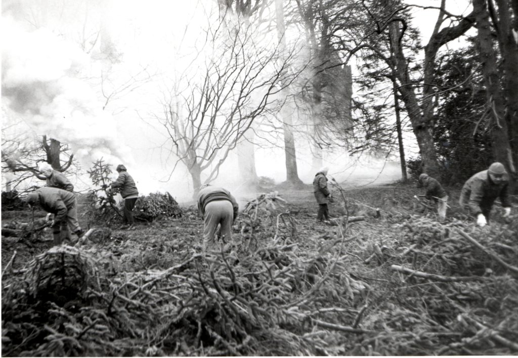 The friends are hard at work clearing trees before burning them on bonfires.