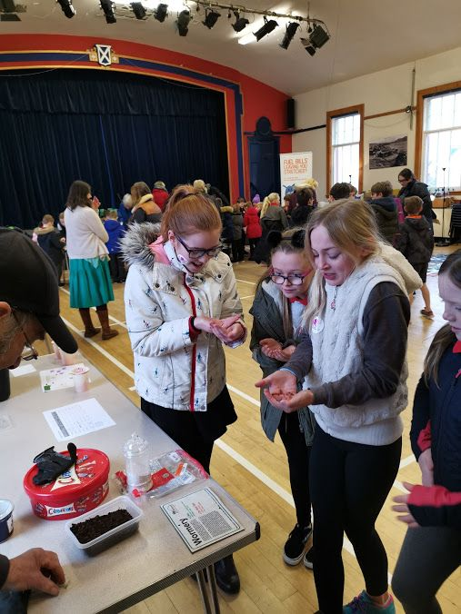 Children have a go at handling worms from the Arran Community Land Initiative.