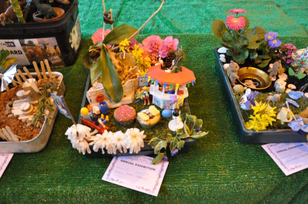 The garden in a tray category received a number of detailed and creative entries.
