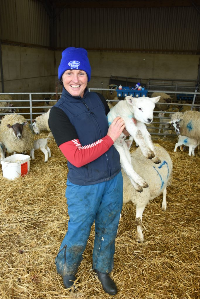 Lamber Kirstie Barton shows visitors a young sheep that was born less than 24 hours earlier.