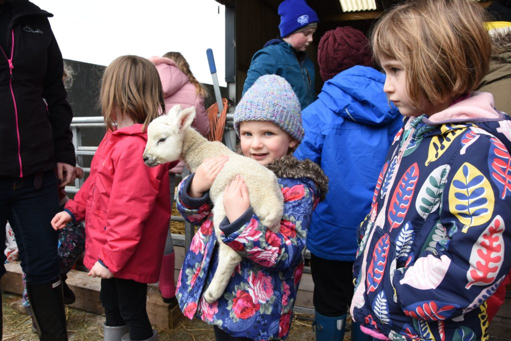 Katie Fleming and her friends have a chance to hold a lamb.