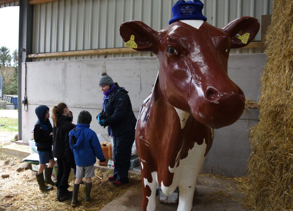Christine Cuthbertson of RHET Ayrshire and Arran talks to an inquisitive group of children about milk products.