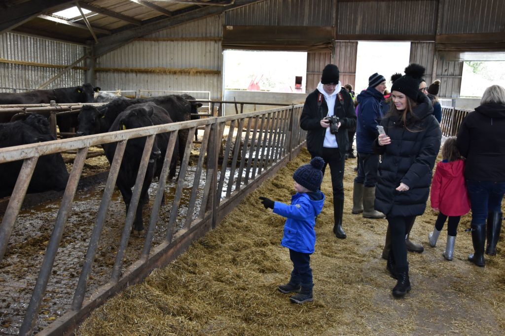 A young boy strikes up a conversation with a friendly cow.