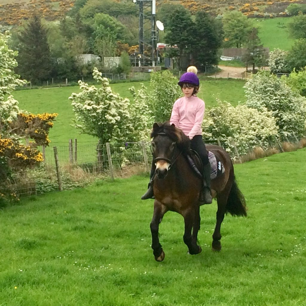 Rosie Wilkinson and Milo enjoy a gallop together.