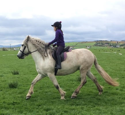 Fancy manes and tails were order of the day. Lucy Blair and Carney.