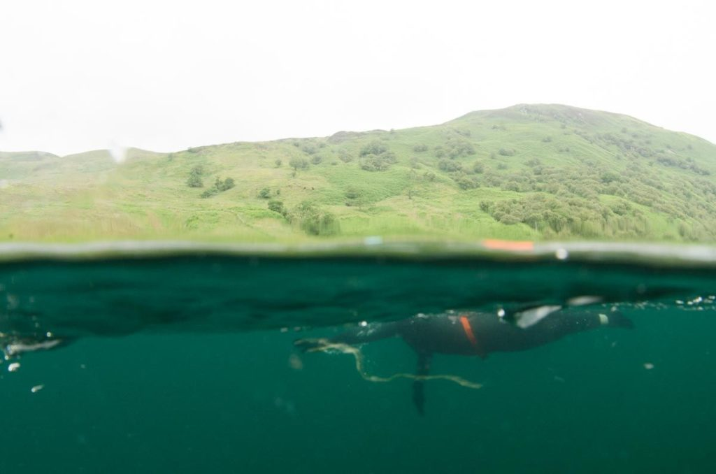 An unusual perspective of Georgina during her swim from under the waterline. Photo: Gus Robson.