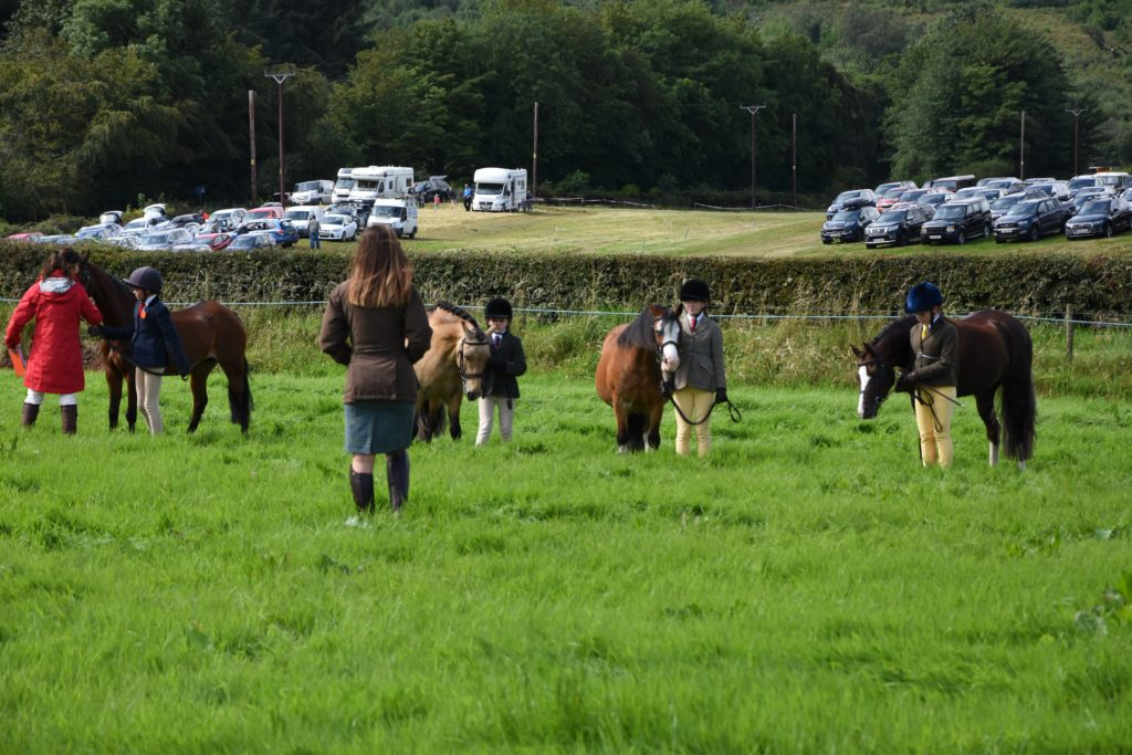 Judges and ring members cast an eye on the young handlers and their ponies.