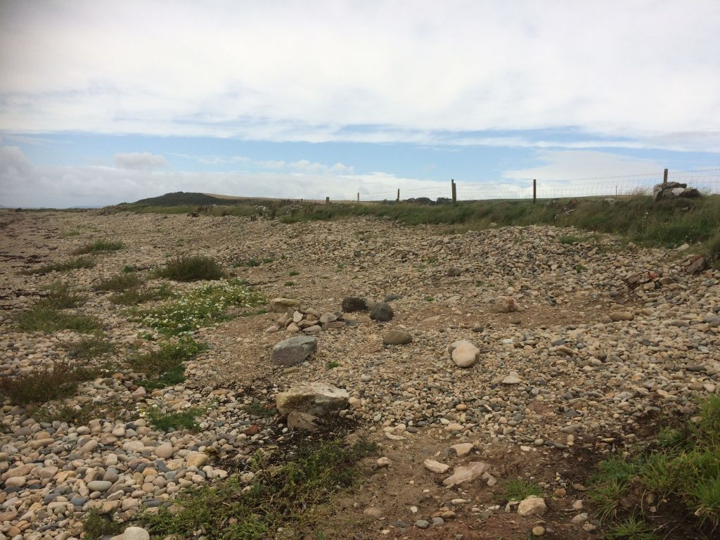 Probe after protected site is damaged near Torrylinn