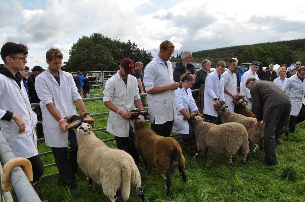 Arran Farmers' Show 2019 trophy winners